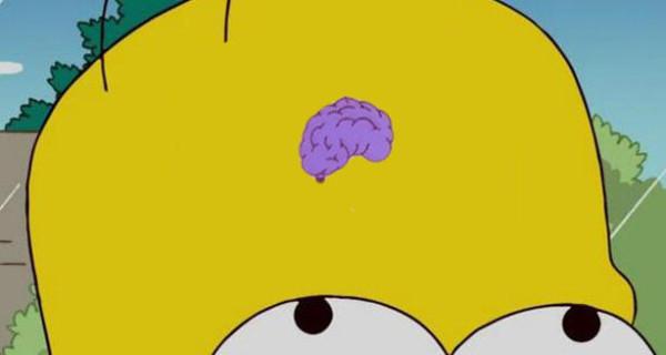 cerveau se contracte